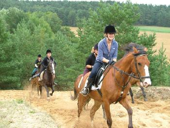 "There are placed called ""Horse Riding Camps,"" where professional equestrians teach amateur horseback riders the correct way to ride."