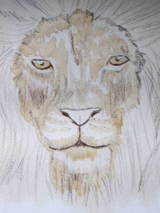 Lion's face with areas of detail and contrast.