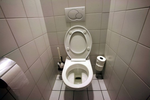Now you have a reason to nag your husband about the toilet seat.