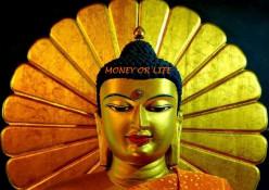 Money or Freedom? Prepare for Economic Revolution