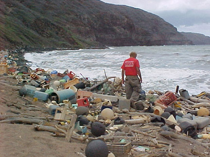 Marine debris on a different Hawaiian beach. I'd be discouraged trying to clean up at all, if this much washed up every day.