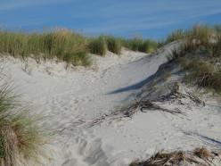 Sand and Sea | Two Poems