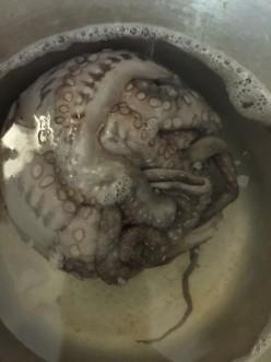 Octopus Sauté
