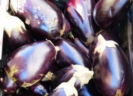 Baingan (Eggplant/Brinjal)