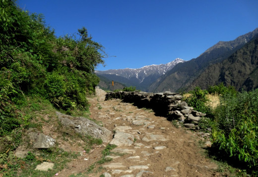 The trek route from Udgam to Devgram 3