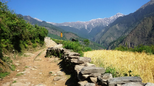 The trek route from Udgam to Devgram 5