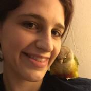 HoolyBird profile image