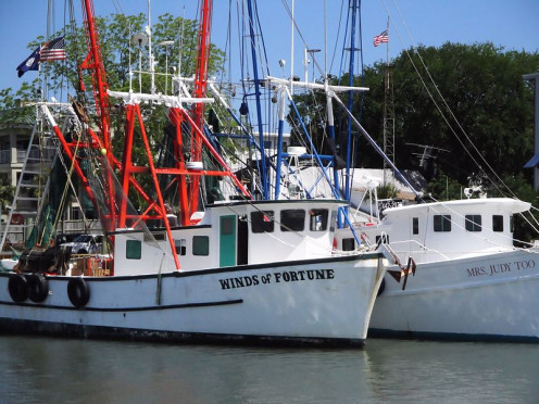 Fishing boats are a usual sight in Mt. Pleasant.