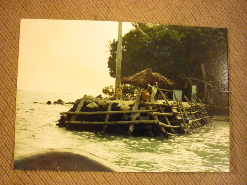 Pier and dogs awaiting ferry at Joy Atoll