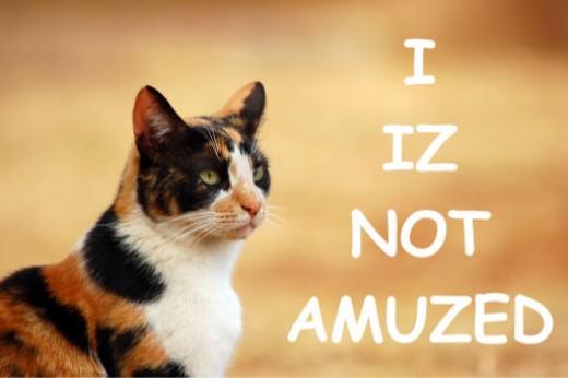 you izn't? :(