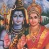 Shiva Karthik profile image