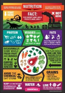 10 Quick High Protein Paleo Diet Snacks