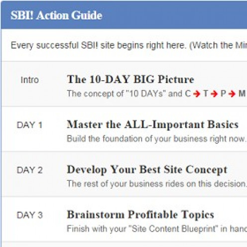 The Site Build It! Action Guide is one of the very best online, business building guides that a prospective, online entrepreneur can use to learn how to build a website and a successful online business.