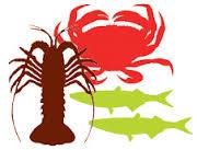 Toxic algae in seafood