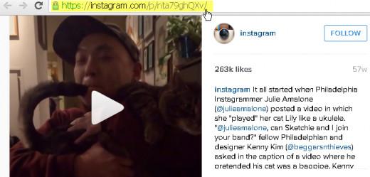Copy the Instagram video url