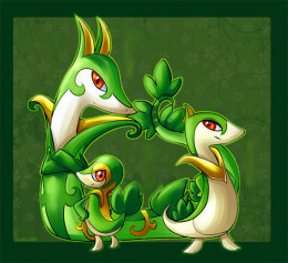 Snivy (middle), Servine (right), and Serperior
