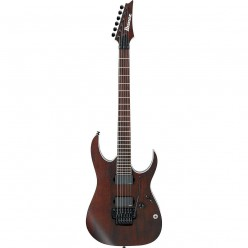 Ibanez Iron Label Series Guitar Review