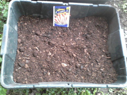 The unsmushed bin got my special peat moss soil mix and a packet of Danvers Half Long carrot seeds.
