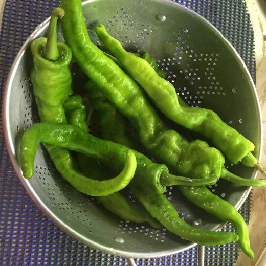 It's best to use large variety of  mild peppers.