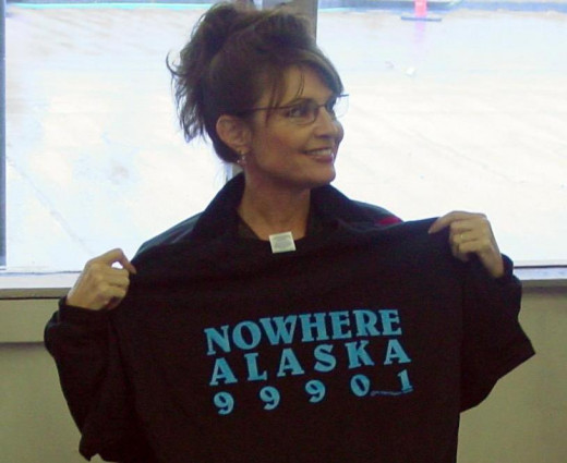 """Palin's U-turn on the """"bridge to nowhere"""" project gained her important political allies."""