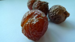 Eco Friendly Detergents - The Sapindus Mukorossi, Also Called the Soapnut Tree
