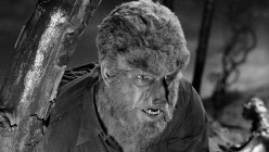 Werewolf Bounty Hunter