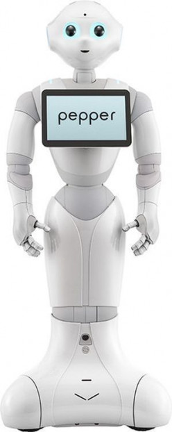 """If Humanoid Robot Pepper is sold to an psychopathic dysfunctional family then what """"feelings'"""