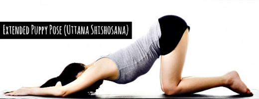 Extended Puppy Pose (Uttana Shishosana) stretches out your spine and eliminates all back pain just like your dog would do - Curejoy