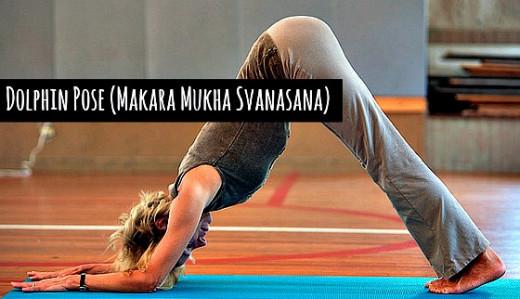 Dolphin Pose (Makara Mukha Svanasana) - Anne Hungerford