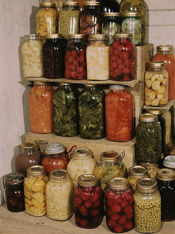 Autumn Food Preserving