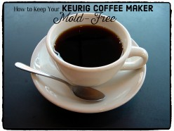 Keurig Coffee Maker: Cleaning Mold From the Water Reservoir