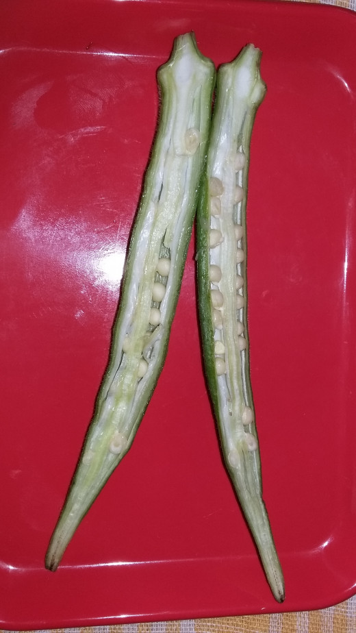 Okra contains many seeds