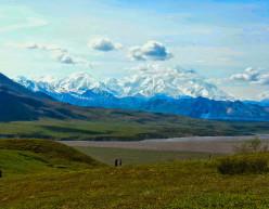 North to Alaska: Denali or Bust