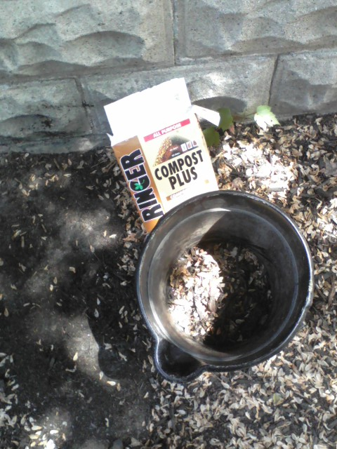 "I will make sure the seeds aren't viable before I add these to the weedy compost pile -- never the ""good"" compost bin."