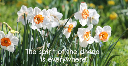 Pantheism is the belief that all of nature holds the spirit of the divine.