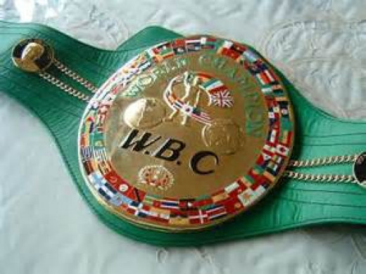 Winning the world championship is the goal of any aspiring professional prizefighter.