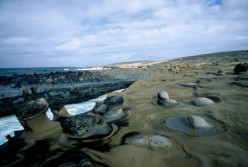 "San Nicolas Island: from book ""The Island of the Blue Dolphins""."