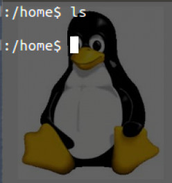 Commonly Used UNIX / Linux Commands for different situations