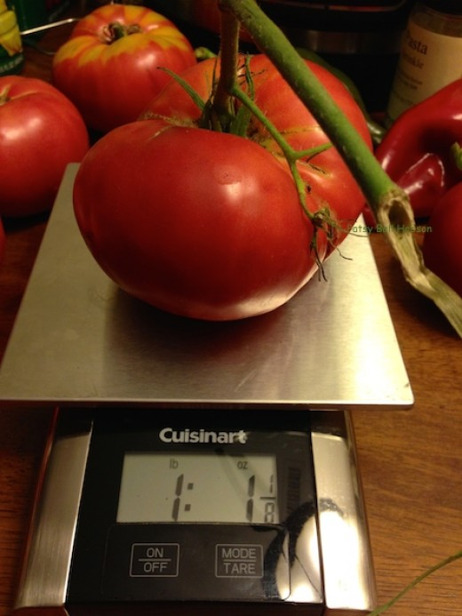 """Big heirloom Brandywine tomatoes consistently win """"Best Tasting Tomato"""" contests."""