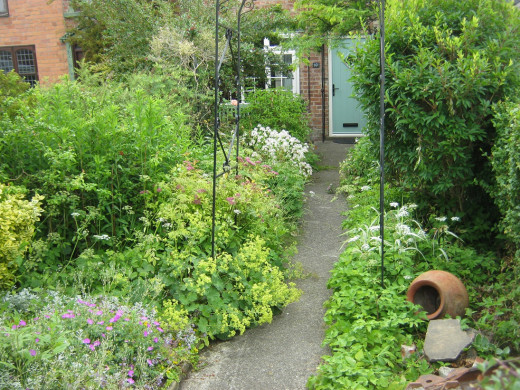 A cottage garden in School Lane, Bishopthorpe