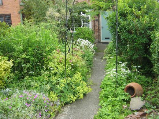 A cottage garden in School Lane, Bishopthorpe
