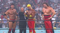 Hulk Hogan Has Betrayed WCW: The Formation of the nWo, 19 Years Later