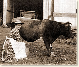 A housewife in the early 1800's had duties such as milking the cow, cooking as well as cleaning.