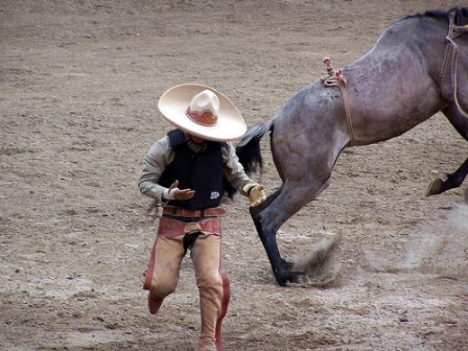 Guanatos Gwyn.Creative Commons 2.0