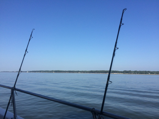 Deep Sea Fishing abord the Drifter.  Departs in Sea Pines from the marina near The Salty Dog