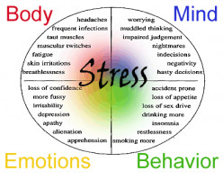Stress -Symptoms and Coping