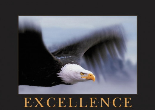 Strive for excellence, but don't forget wisdom