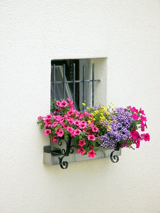 Clean windows allow more light to shine in to your home and make the overall appearance of the room brighter and cleaner.