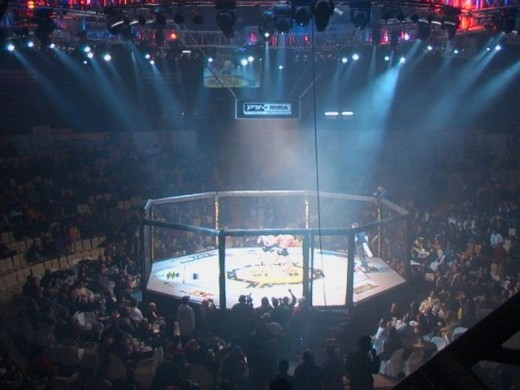 a research on the ultimate fighting championship no holds barred mixed martial arts The ultimate fighting championship with other mixed martial arts promotions once an ally of senator mccain's campaign against no holds barred fighting.