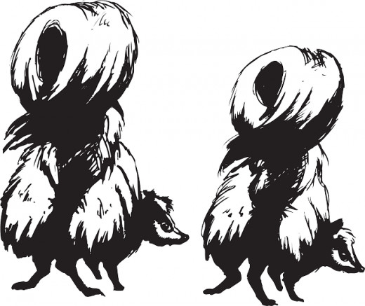 Skunks are cute but they can be very smelly stinky.